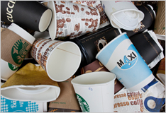 Coffee mugs: a burden on the environment