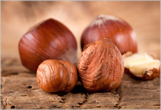 Hazelnuts – virtually unsurpassable versatility