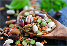 Pulses: staple foods for many