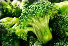 Broccoli, delicious florets with spicy flavour