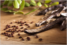 Locust bean: the cocoa of the ancient world