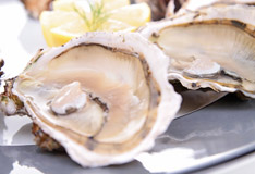 Oysters with special flair – a real delicacy